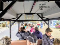 inside the petite train in Honfleur