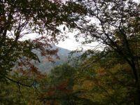 Fall at Foxden, NC