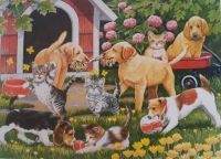 Cats and Dogs at Play-                artist- William Wanderdasson art licensing.com