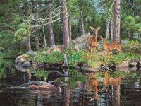 Neighbors-Deer & Loons by Jim Kasper
