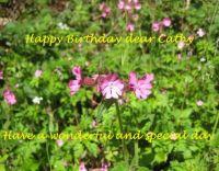Happy Birthday Cathy (cevas)