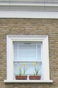 Daffodils on a Window Ledge
