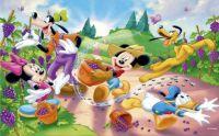 Mickey & Friends 14