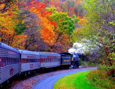 train passing through fall