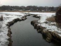 Cape Cod Winter Marsh 01-26-2014