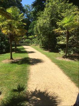 Sheffield Park 2018