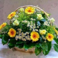 Happiness is...... A Delightful Basket of Flowers.
