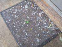 Oh hail!