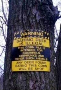 deer warning.jpeg