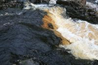 Low Force #4