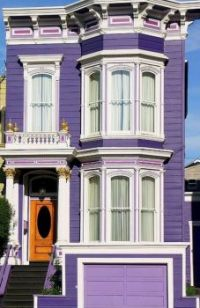 Purple Painted Lady