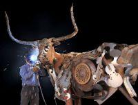 building a bull