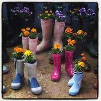 wellies-in-bloom