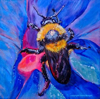 """Laguna bee"" by Diane Morgan"