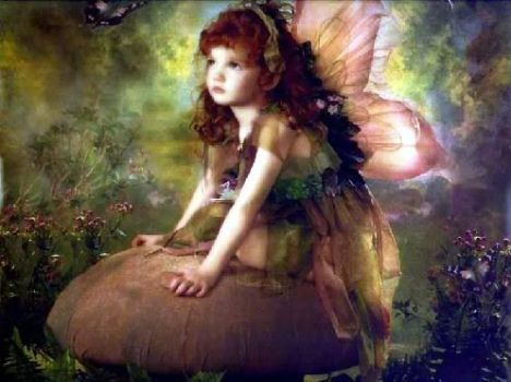 fairy_on_a_toadstool_unknown