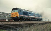 Glorious in NSE Livery