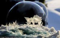 Frosty Snow Globe 7