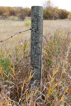 prairie fence post
