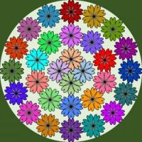 040921 flowers
