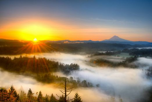 Mist covers the valley below as the sun rises over Jonsrud Viewpoint, Oregon