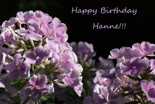 Happy Birthday Hanne!!!!!