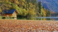 October Boathouse By The Lake