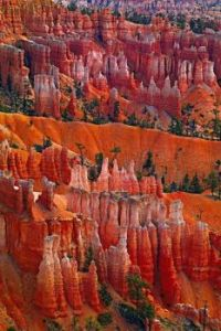 Bryce Canyon, Peter Lik Fine Art Photography