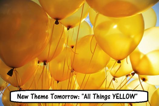 "New Theme Tomorrow: ""ALL THINGS YELLOW"""