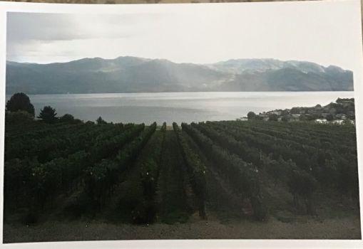 Memory Lane - visit to wineries 2013 Okanagan Valley, British Columbia
