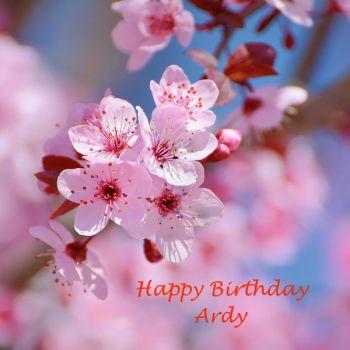 Happy Birthday Ardy!