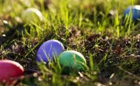 Colourfull Eastereggs in the grass...