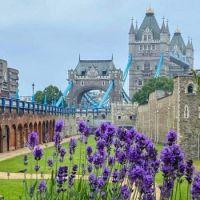Tower Bridge & Tower of London, England