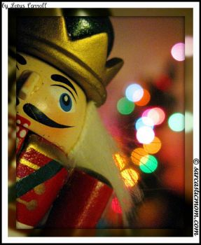 Happy Bokeh Holidays by Lotus Carroll on flickr