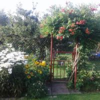 From  Max's garden - Gates to the neighboring kingdom☺