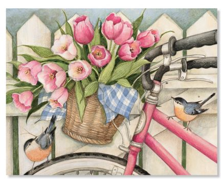 Birds, Flowers and Bikes