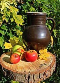 Apples & Pitcher Still Life