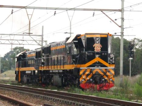 Diesel Locomotive - Rovos Rail