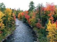 fall colors in the Upper Peninsula
