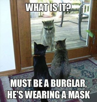 Who Was that Masked Stranger?...