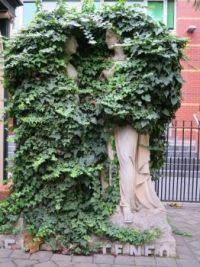 Ivy Ladies