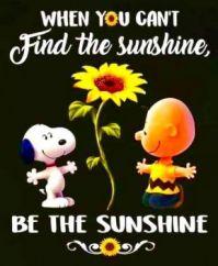 Snoopy Sunshine...