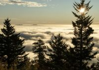 Morning Clouds at Clingmans Dome