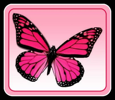 This Pinknblack Butterfly just makes me happy.  Have a great day, Jigidi fans!