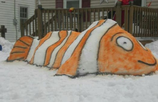 NEMO the snowfish