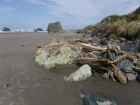 Bandon, Oregon coastline.  Unusual colored and shaped boulder