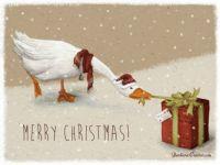 Merry Christmas - Barbara Cantini