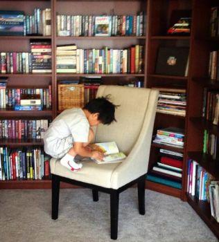 crouching reader hidden genius