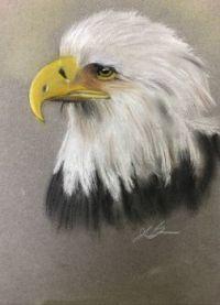 Eagle:19