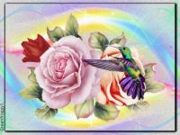 PUZZLE - Hummingbird With Roses