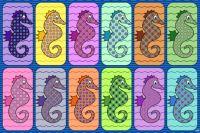 Fancy Seahorses!! ~ XL